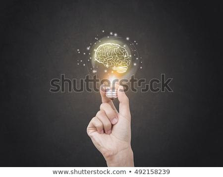 Tudás erő idézet kézzel írott kréta zöld Stock fotó © stevanovicigor