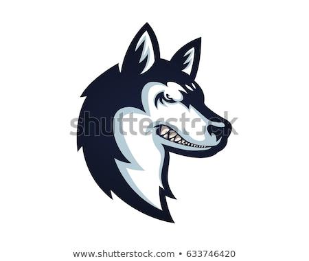 illustratie · hond · atleet · race - stockfoto © karelin721