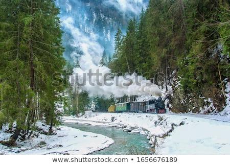 Smal stoomlocomotief bergen berg Stockfoto © wildnerdpix