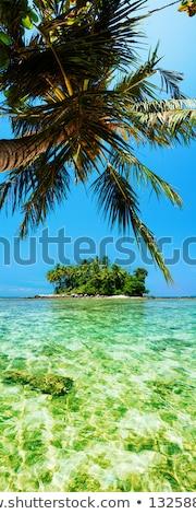 Тропический остров панорамный вертикальный пляж небе облака Сток-фото © moses