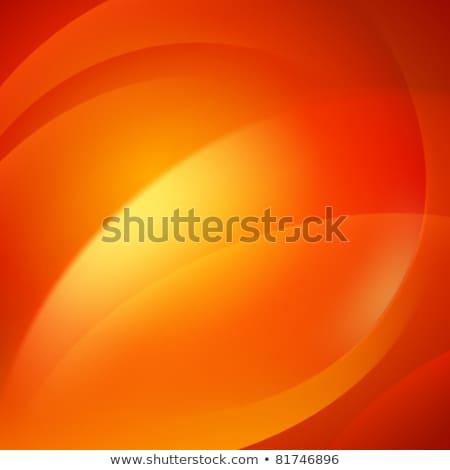Orange Red Swirl Stock photo © ArenaCreative