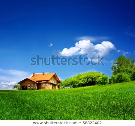 Ciel bleu herbe verte maisons architectural maison printemps Photo stock © cherezoff