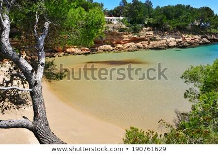 Cala Calafato beach in Ametlla de Mar, Spain Stock photo © nito