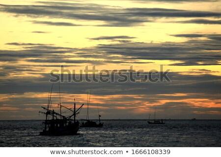 Blu silhouette barca uccelli tramonto fiume Foto d'archivio © morrbyte