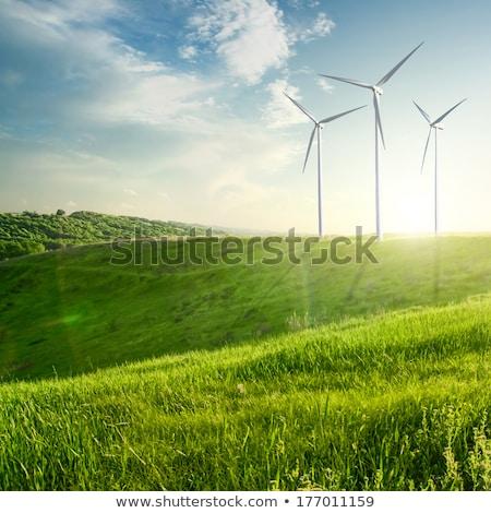 vento · generatore · turbina · estate · panorama · albero - foto d'archivio © artjazz