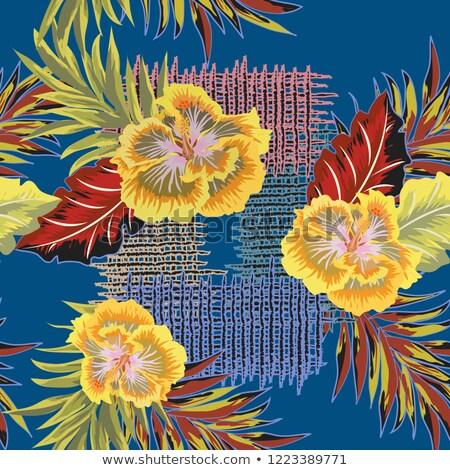 szalmaszál · textúra · fű · háttér · padló · növény - stock fotó © dezign56