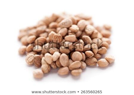 Sarpgandha Seeds (Rauvolfia serpentina) Stock photo © ziprashantzi