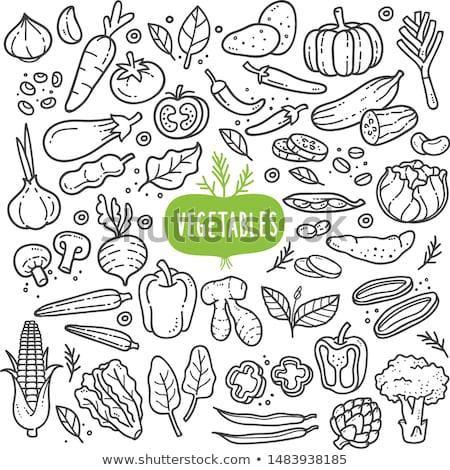 Melanzane vegetali cartoon illustrazione alimentare oggetto Foto d'archivio © izakowski