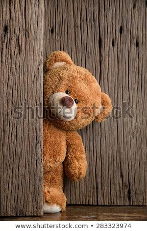 cute teddy bear stock photo © designsstock