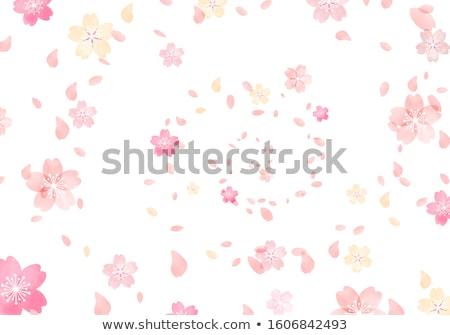 wiosną · drzewo · kwiaty · kwiat · kwitnąć · ciepły - zdjęcia stock © undy