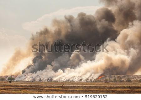 Brandend vuilnis hoop rook oranje Stockfoto © Witthaya