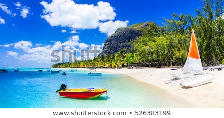 Summer Vacation on Mauritius Beach Stock photo © stevanovicigor