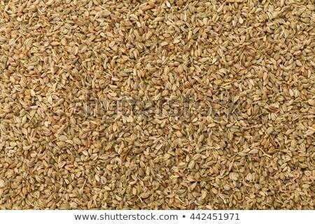 Thymol seeds (ajwain) Stock photo © vinodpillai