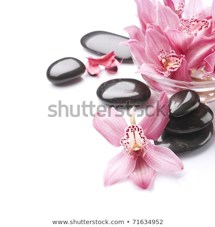 spa stones and orchid flowers over black stock photo © tetkoren