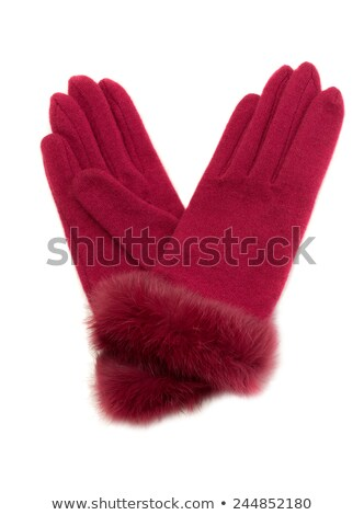 Crimson warm ladies' gloves with fur. Stock photo © RuslanOmega