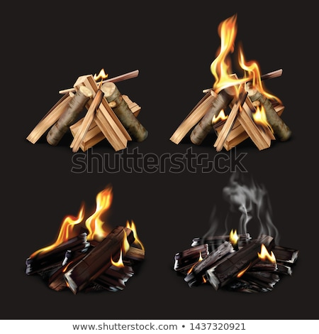 Wood burning phase  Stock photo © Fotografiche