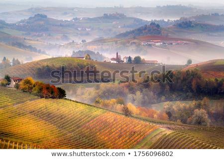Sonbahar sonbahar tepeler ortaçağ kale kuzey Stok fotoğraf © rglinsky77