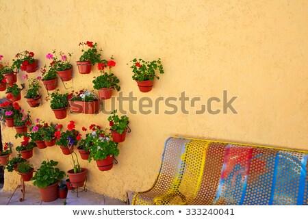 Colorido fachada flor plantas flores edificio Foto stock © lunamarina