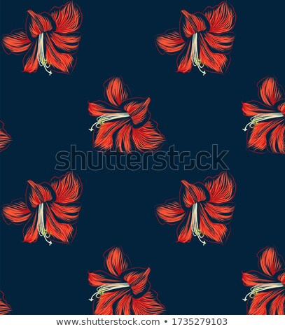 Blue hibiscus flowers in repeat pattern Stock photo © adamfaheydesigns