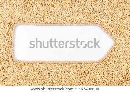 Stock photo: Frame made of rope with barley lying on a white background