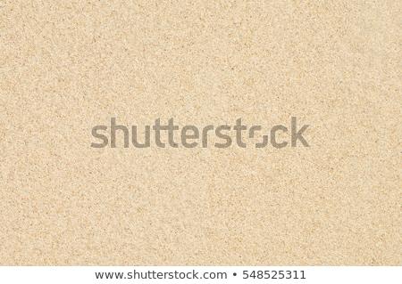 Homok textúra nedves fekete vulkáni tengerpart Stock fotó © Alsos
