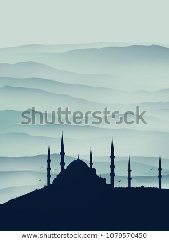 イスタンブール 日の出 空 建物 日没 光 ストックフォト © elxeneize