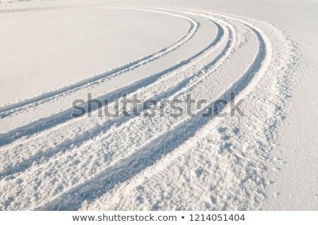 зима · пейзаж · Германия · лес · снега - Сток-фото © w20er
