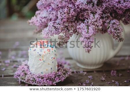 Closeup of Siren Flower at Blossom  Stock photo © courtyardpix