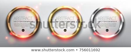 抽象的な · メタリック · 銀 · サークル · フレーム · ベクトル - ストックフォト © saicle