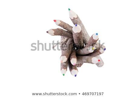 Haut vers le bas vue crayons écorce Photo stock © ozgur
