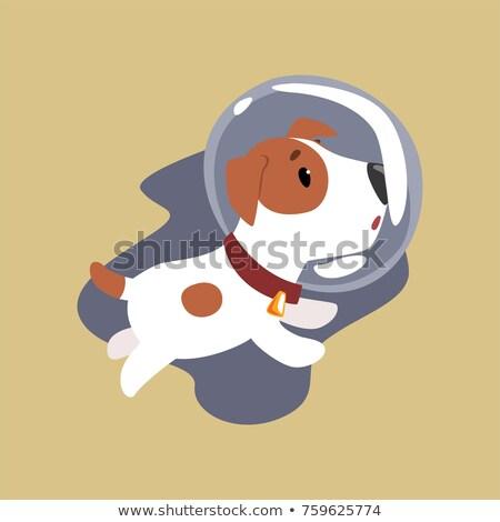 Energiczny astronauta ilustracja biały tle garnitur Zdjęcia stock © bluering