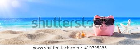 Summer Savings Stock photo © Lightsource