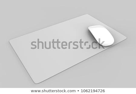 Plastic table mat Stock photo © Digifoodstock