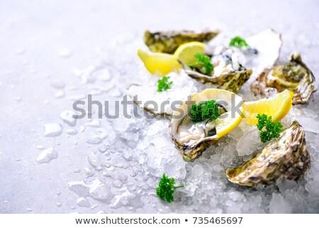Istiridye limon gıda akşam yemeği Noel Stok fotoğraf © M-studio