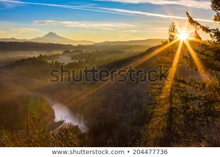 ストックフォト: Foggy Sandy River Valley During Sunrise