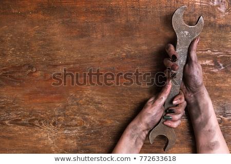 механиком водопроводчика женщину гаечный ключ мастер на все руки Сток-фото © Krisdog