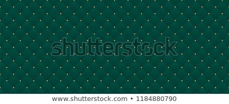 Retro sterren banner groene helling partij Stockfoto © x7vector