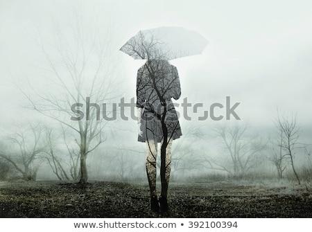 女性 · 立って · フィールド · 秋 · 自然 · 美 - ストックフォト © Alones