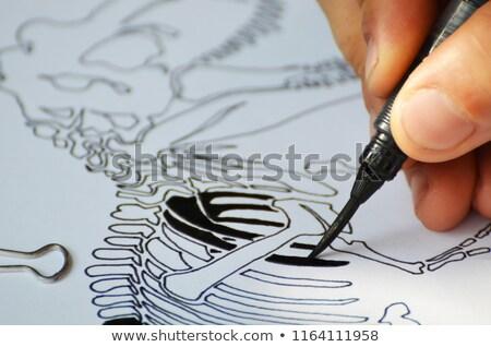 cartoon · dinosaurus · boek · illustratie · bril - stockfoto © bennerdesign