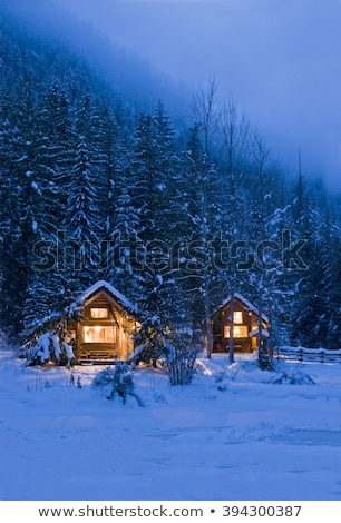 Winter night with old wooden huts in the mountains Stock photo © Kotenko