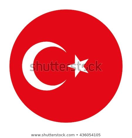 dankzegging · Turkije · onderwerp · afbeelding · kunst · vogel - stockfoto © colematt