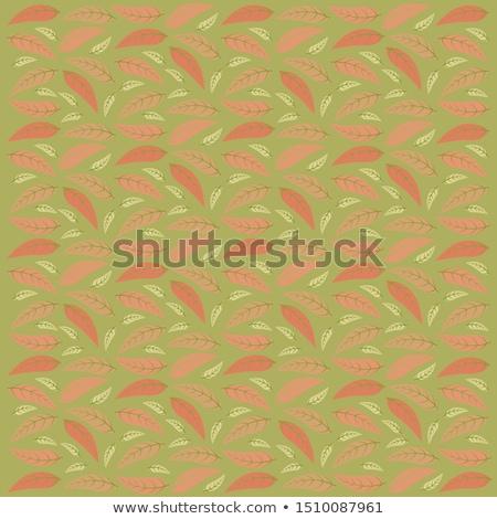 tropical · folhas · sem · costura · floral · padrão · vetor - foto stock © Natali_Brill