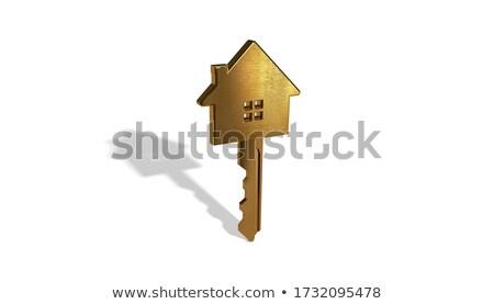Krom anahtar 3d render anahtar deliği ev kapı Stok fotoğraf © ajn