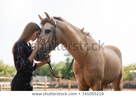 Güzel genç kadın at aygır kadın Stok fotoğraf © konradbak