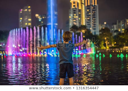 fountain on the lake in the evening near by twin towers with ci stock photo © galitskaya