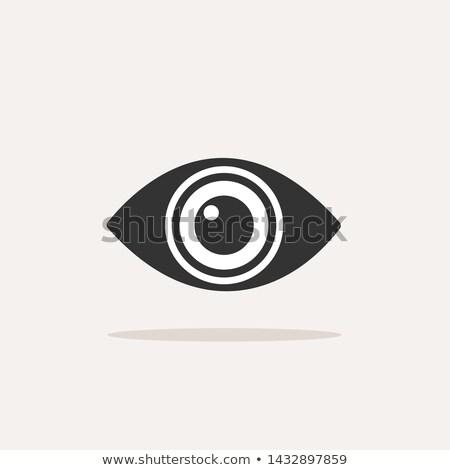 Test előrelátás szem ikon árnyék bézs Stock fotó © Imaagio