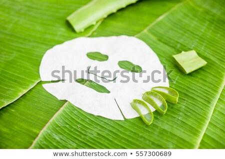 Vel masker aloë banaan blad organisch Stockfoto © galitskaya