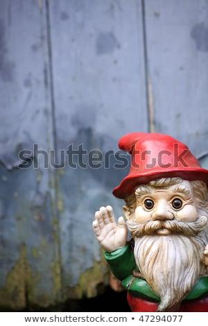 integet · gnóm · kicsi · díszített · szakállas · kert - stock fotó © naffarts