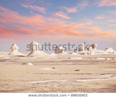 пейзаж белый пустыне Египет известный красоту Сток-фото © bbbar