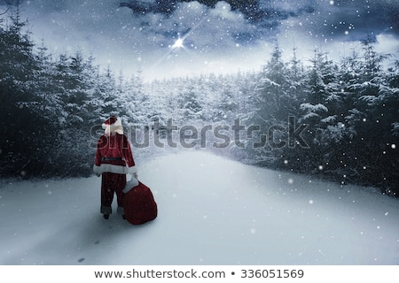 Santa Claus Standing with Sack in Winter Forest Stock photo © robuart